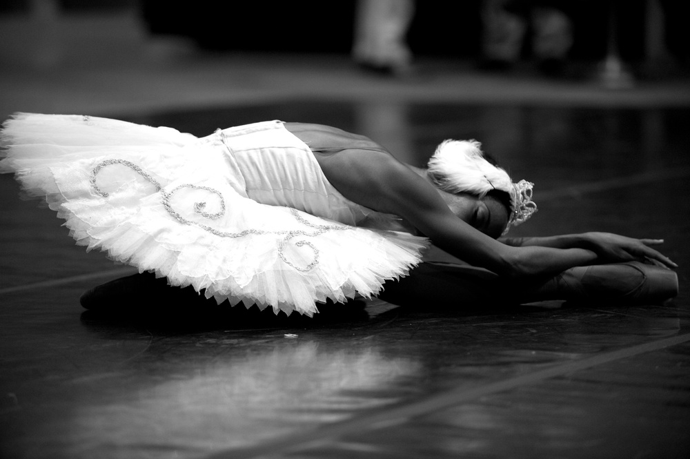 Evoking the sentiment of a digital Museum by sharing the Memoirs of Blacks in Ballet